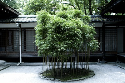 s-上賀茂神社