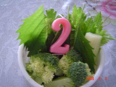 ライム2歳サラダ