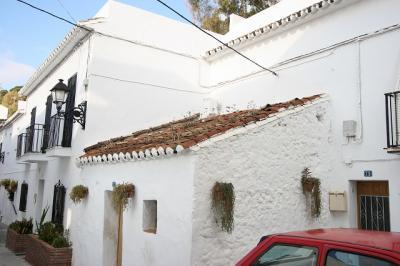 屋根に雑草