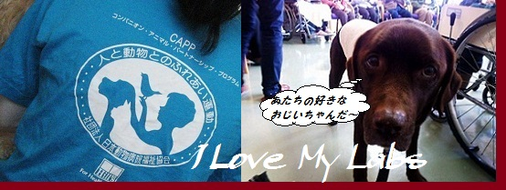 IMG_0003 (3)AAA 2011-12