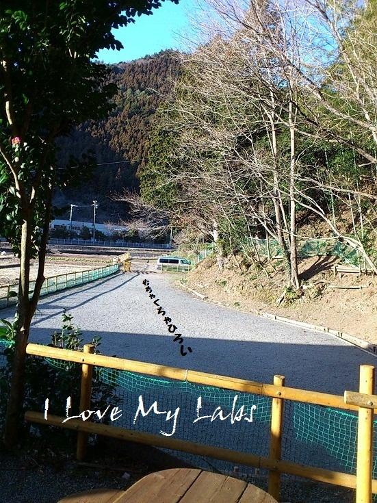 DSC_1764 (2) Haruna Feb 2012