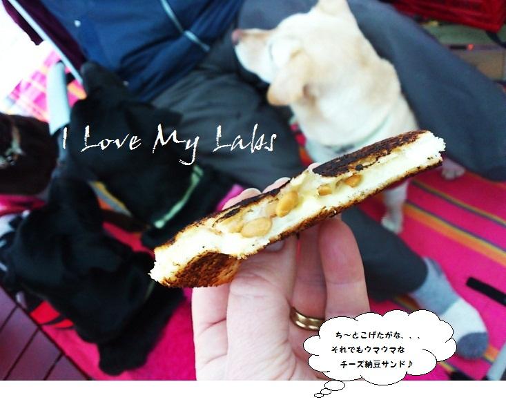 DSC_1781 (2) Haruno Feb 2012