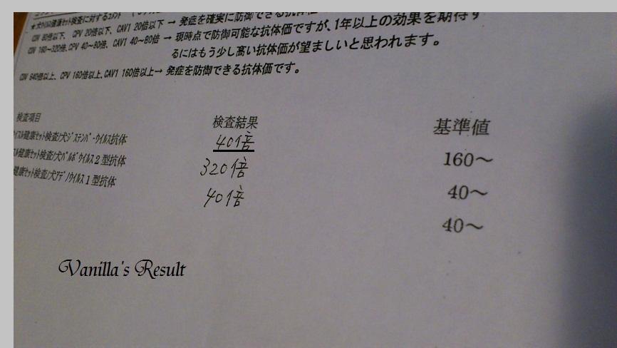DSC_1861 (2)Check-up 2012