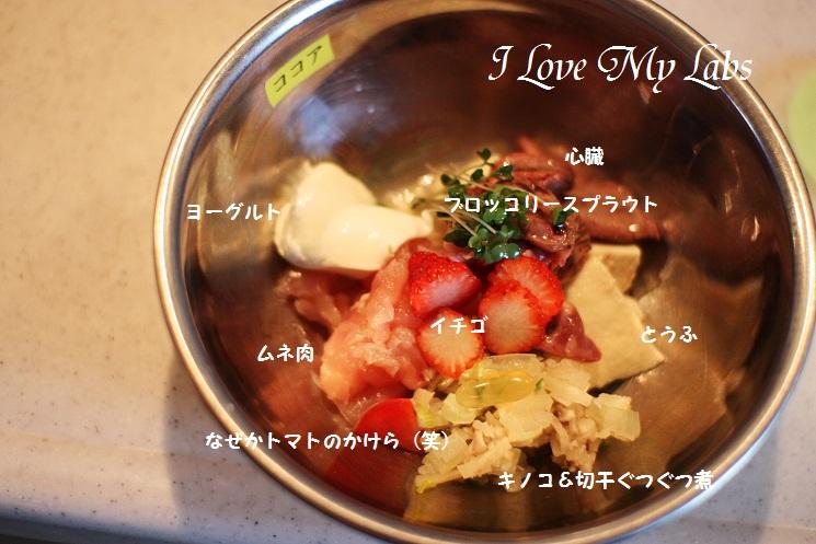 IMG_7269 (2)2012-03-25