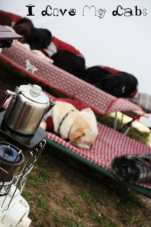 IMG_8402 (2)Camp April 2012