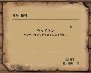 mhf_20070711_215817_937.jpg