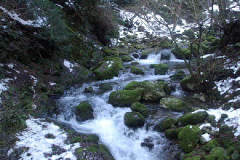 河内風穴-川-