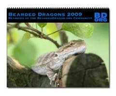 bd_calendar2009.jpg
