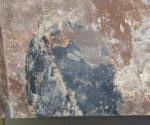 化石葉っぱ2
