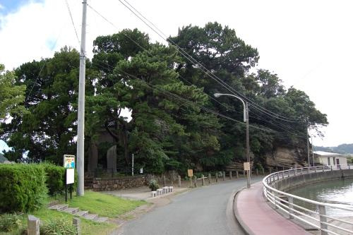 shimoda14.jpg