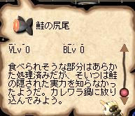 2006/12/27鮭