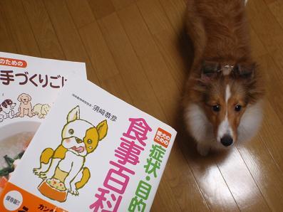 syokuji.jpg