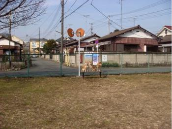 10_20090204163707.jpg