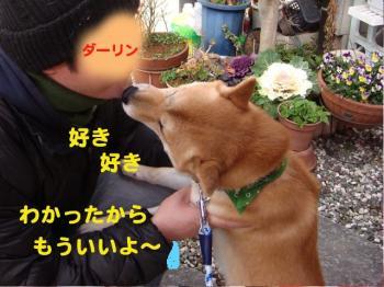 10_20090211221409.jpg