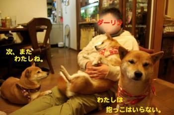 10_20090325014152.jpg
