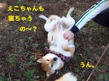10_20090406020932.jpg