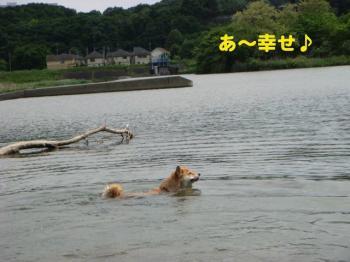 10_20090513230500.jpg