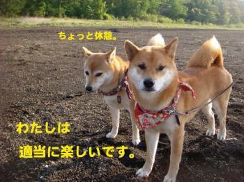 10_20090522192647.jpg
