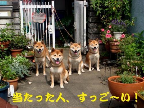 10_20090620013633.jpg