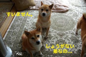 10_20090705215944.jpg