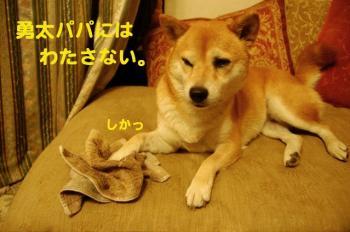 10_20090720012009.jpg