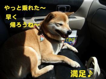 11_20090409215058.jpg