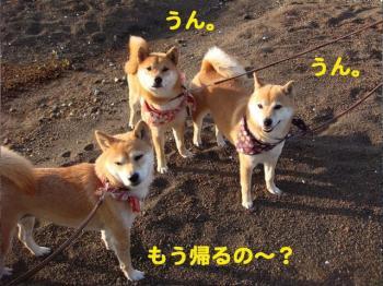 11_20090522214832.jpg