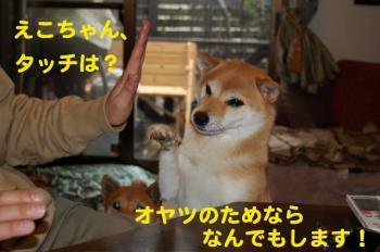 13_20090124211853.jpg