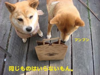 13_20090420083612.jpg
