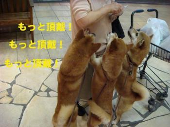 14_20090711233940.jpg