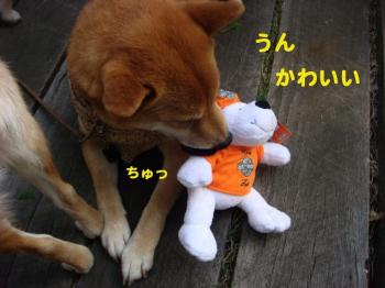 15_20090420084641.jpg