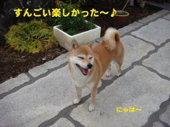16_20090511162049.jpg