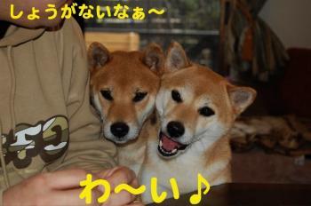 17_20090124212309.jpg