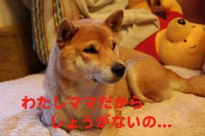 1_20081221185020.jpg