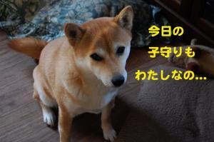 1_20090108215319.jpg