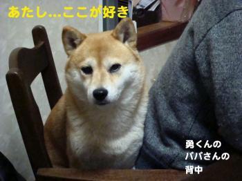 1_20090208020824.jpg