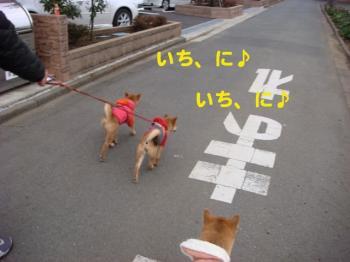 1_20090211214606.jpg