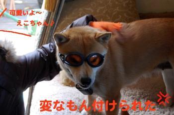 1_20090222011830.jpg