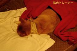 1_20090419091243.jpg