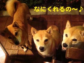 1_20090610210603.jpg