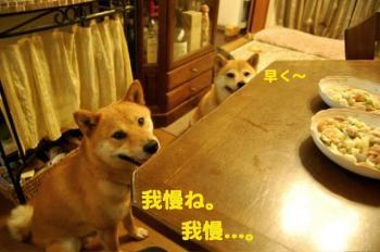 1_20090715031024.jpg