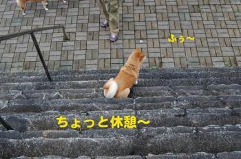 1_20090731004909.jpg
