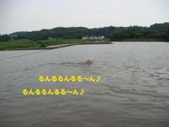 1_20090814165910.jpg