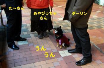 21_20090402190207.jpg