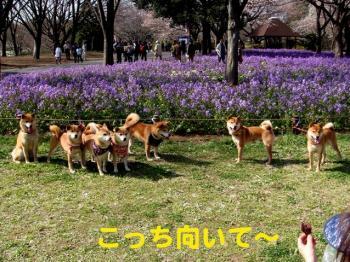 23_20090406230404.jpg