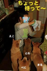 2_20081225012710.jpg