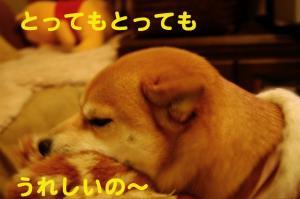 2_20090121171204.jpg