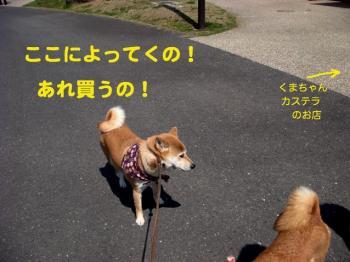 2_20090405215849.jpg