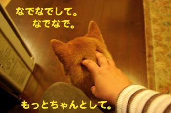 2_20090410192530.jpg