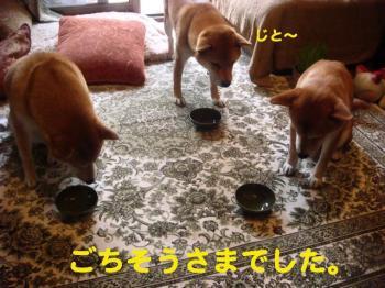 2_20090614195016.jpg